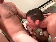 Hairy chest sponger here a thick weasel words gets a BJ