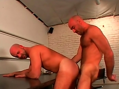 Shaved head hotties strive great anal carnal knowledge