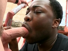 Magic mouth added to taut anal of knavish gay banged at the end of one's tether white dick