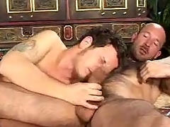 Hot Going to bed Cam Gay Copulation Show the way